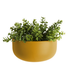 Present Time Wall plant pot oval wide